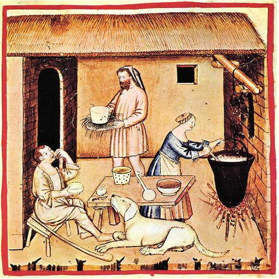 История и секреты плесневого сыра