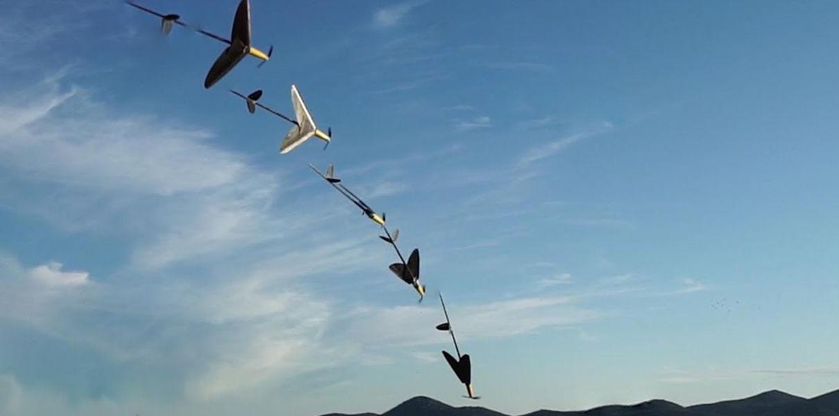 Дрон-амфибия AquaMAV ныряет в воду, сложив крылья