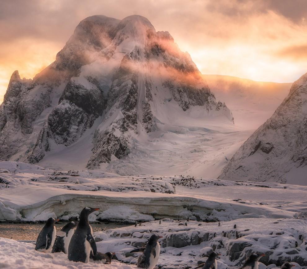 Удивительная Антарктика