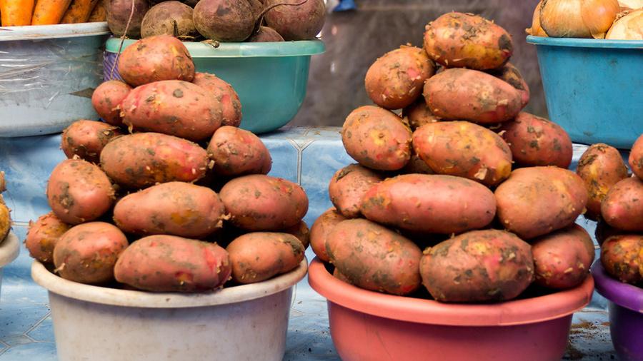 Токсичная картошка