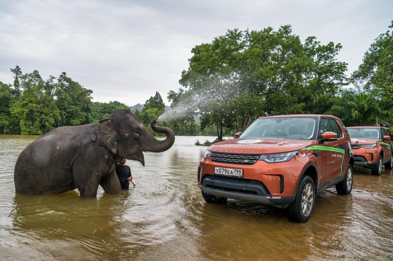 Слон помыл автомобили. Таиланд