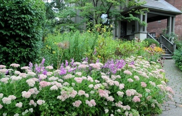 11 вещей, которые нужно сделать в саду в сентябре