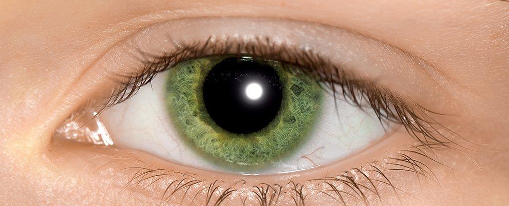 Как диагностируют аутизм простой оптический иллюзией