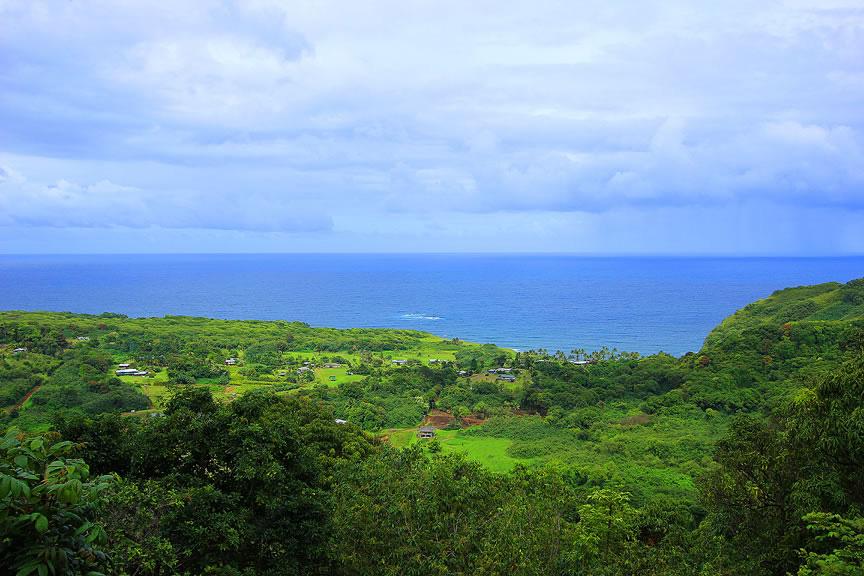 Потрясающие сады острова Мауи