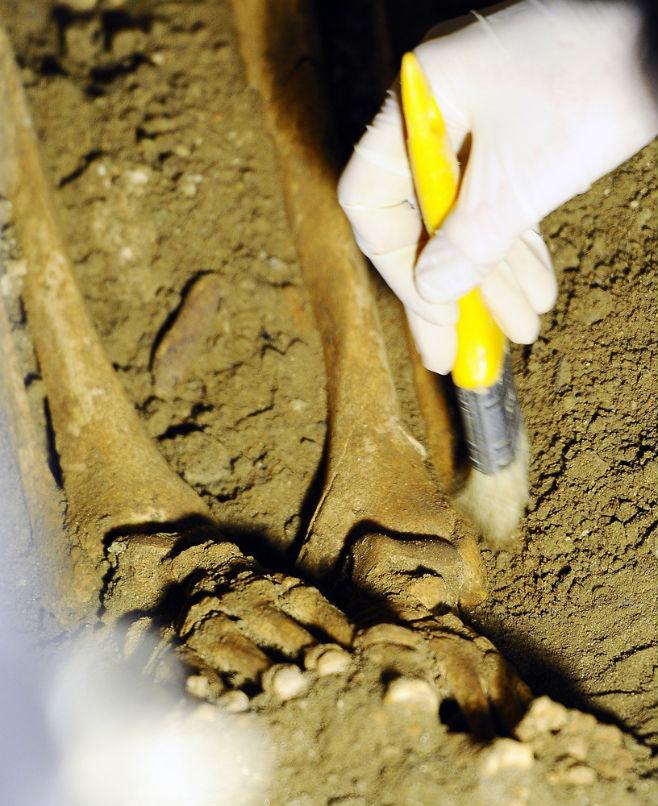 MonaLisa09 Обнаружены останки Моны Лизы