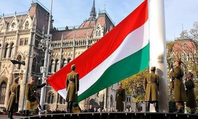 Венгрия призвала ввести в Закарпатье наблюдателей ОБСЕ