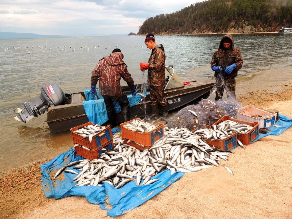 ловля рыбы в заповеднике статья