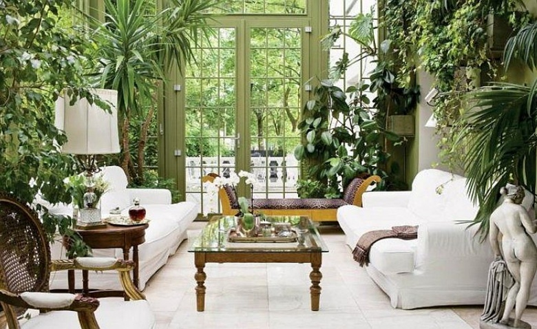 10 самых спорных мест для растений в квартире