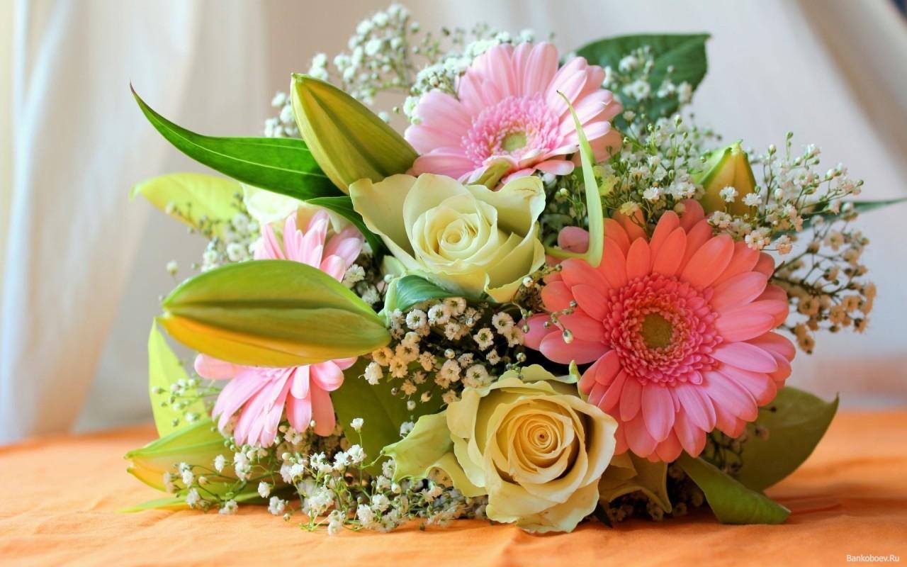 Как вырастить цветы для шикарных букетов! Как сделать газон своими руками
