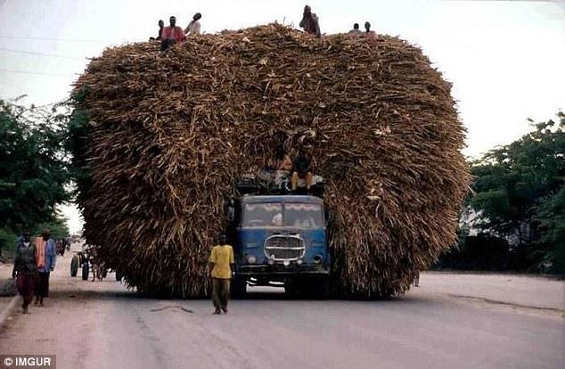 Транспортные перевозки, которые бросают вызов законам физики и здравому смыслу