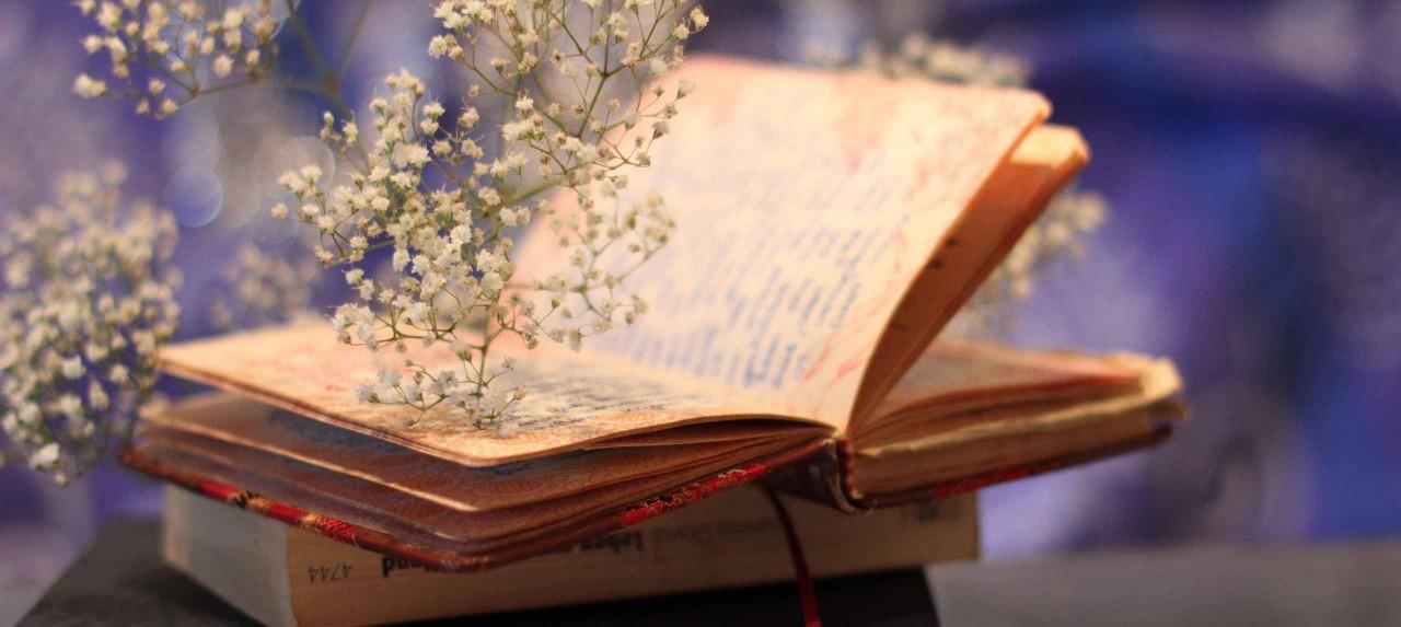 Любителям чтения - книги, изменившие мир