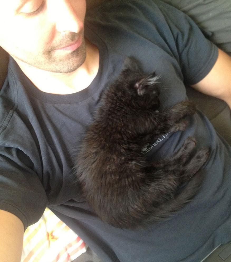 Она вспрыгнула на плечо посетителю, и решила свою судьбу… Кстати, это была не простая кошка
