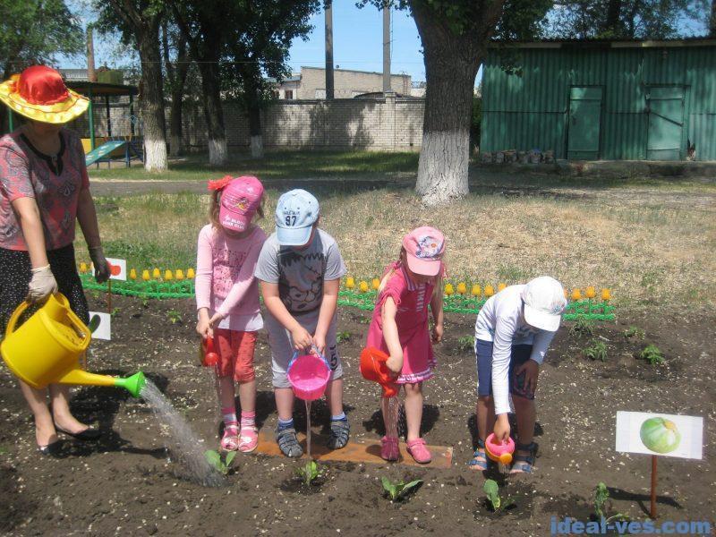 Совместный труд на огороде