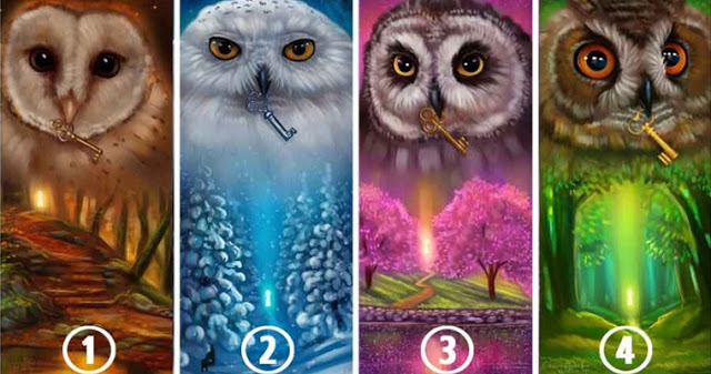 Выберите сову и узнайте, о ч…