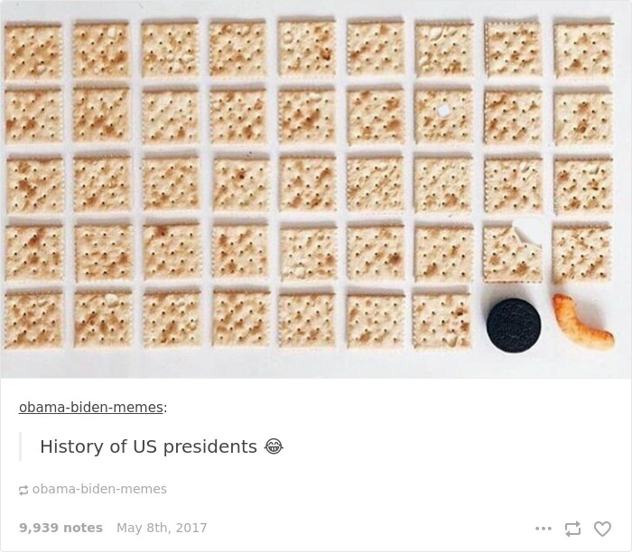 10+ Times Tumblr Hilariously Roasted Americans