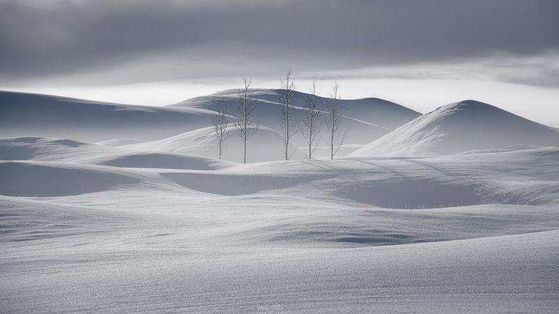 Stillness of Icelandic winte…