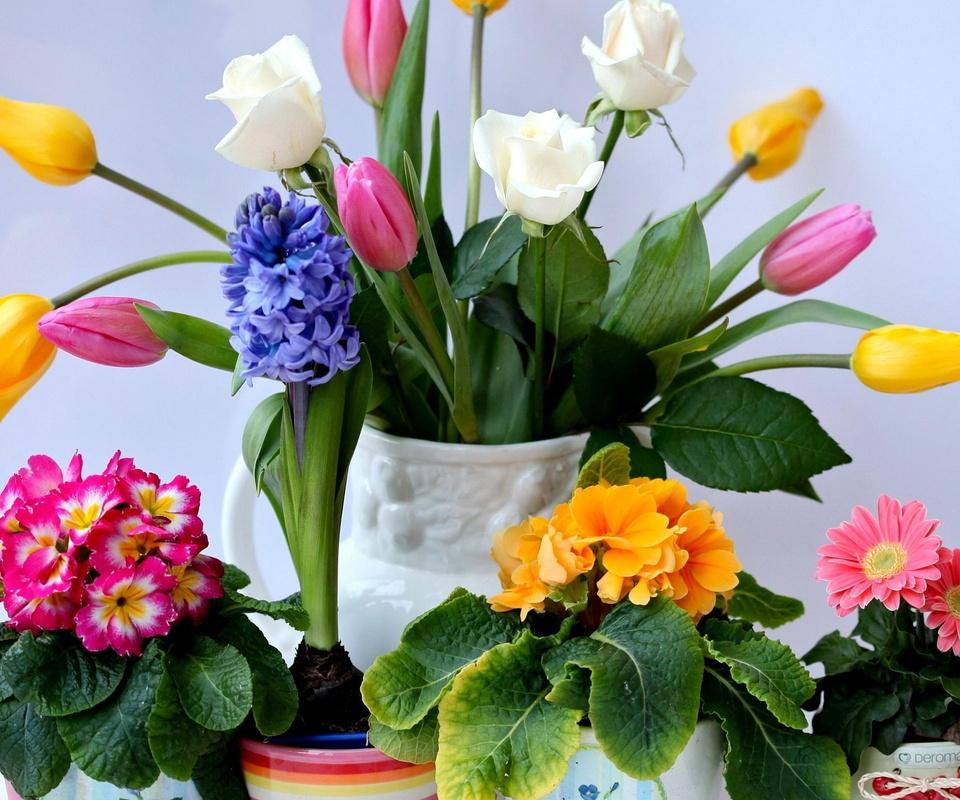 тюльпаны, ваза, цветы