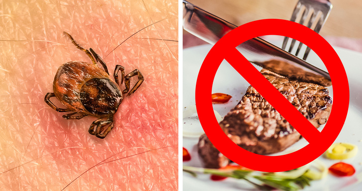 Непредсказуемые побочные эффекты, которые могут возникнуть после укусов животных