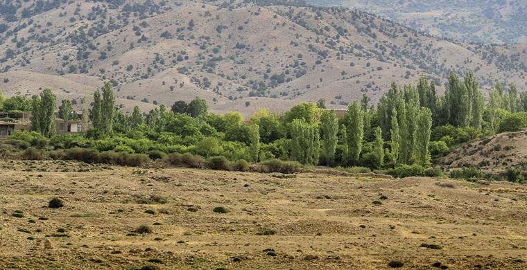 В Иране нашли следы монгольского нашествия