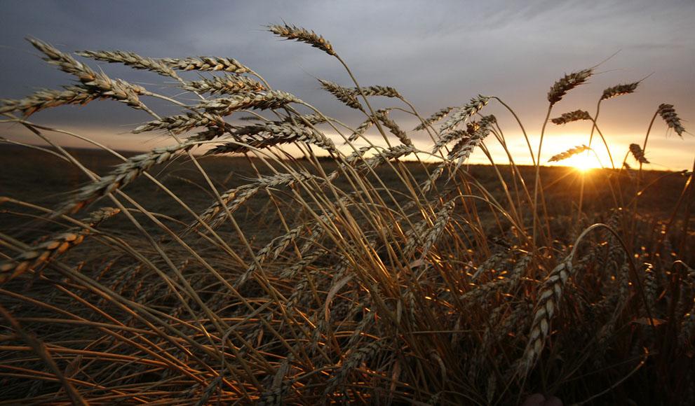 Осень в картинках, осенние фото