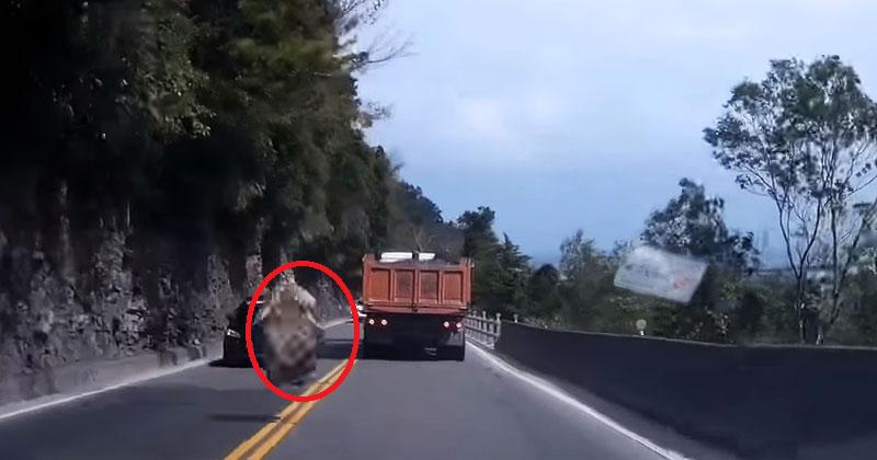 Водитель спокойно ехал по дороге. Внезапно сверху прилетело то, что чуть не лишило его жизни!
