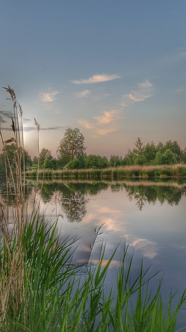 Кусочек реки Лиелупе у дома.... времена года, природа, юрмала