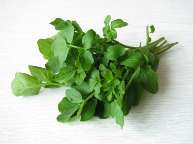 11-calcium-rich-fat-burning-foods-11-watercress-sl
