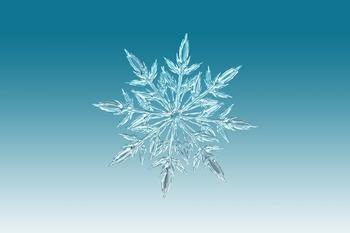 Синоптики: в Москве в выходные может выпасть снег
