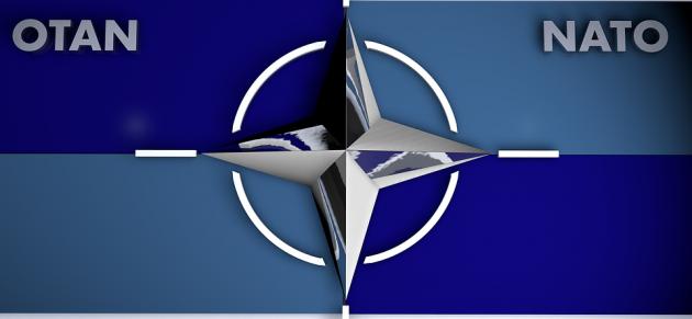 НАТО отказывается от участия в боевых действиях коалиции по борьбе с ИГИЛ