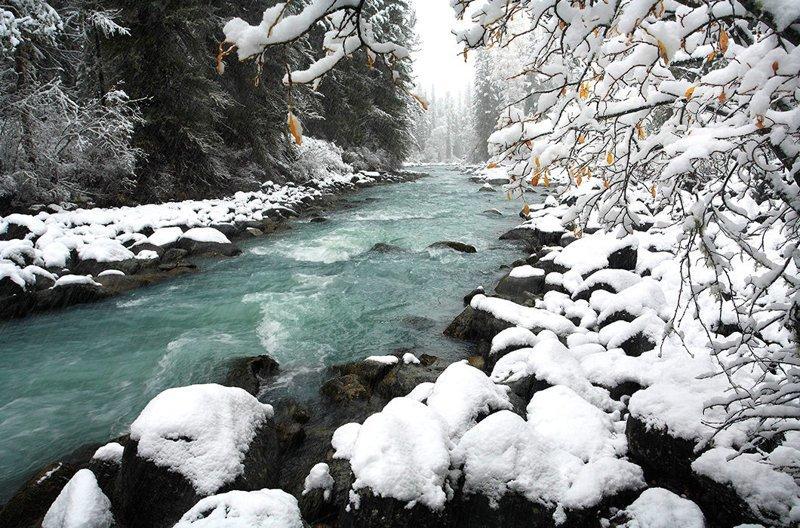 Ущелье долины реки Кучерла у горы Белуха, Алтай © Nature Picture Library зима, красота, природа, россия, фото