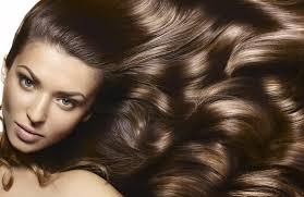 Укрепляем волосы изнутри – 3 лучших продукта для ваших волос по мнению специалистов