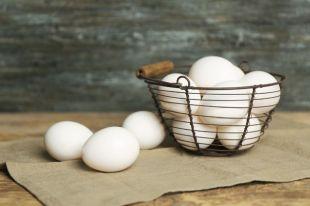 А что под скорлупой? Результаты экспертизы куриных яиц