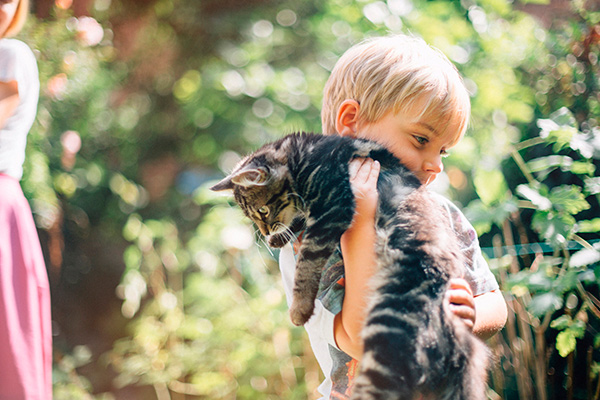 Ребенок или котенок?