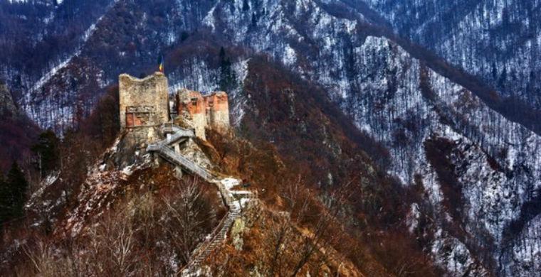 Клыки и когти: замок Дракулы закрыли из-за угрозы нападения на туристов