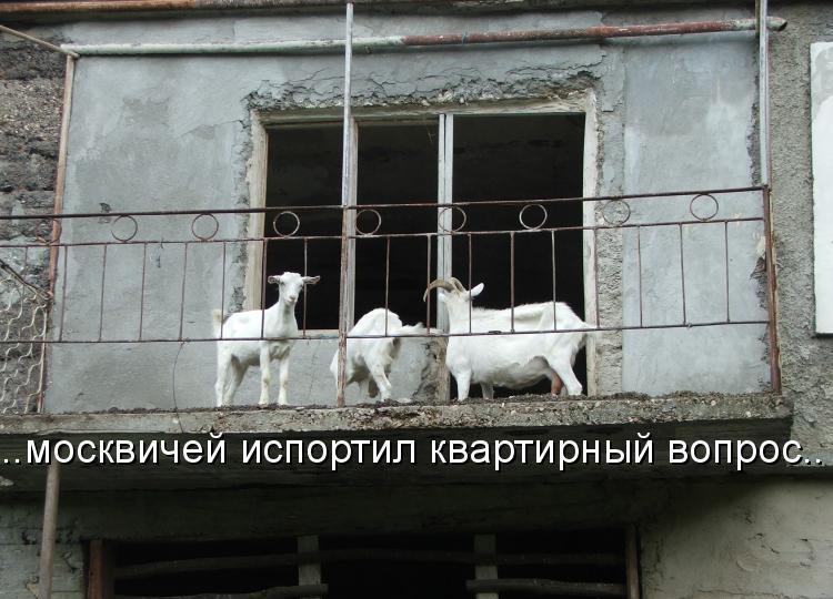 Квартирный вопрос испортил москвичей кто сказал