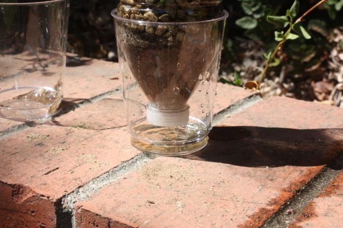 Навыки выживания -  сделать из подручных материалов  собственный фильтр для воды