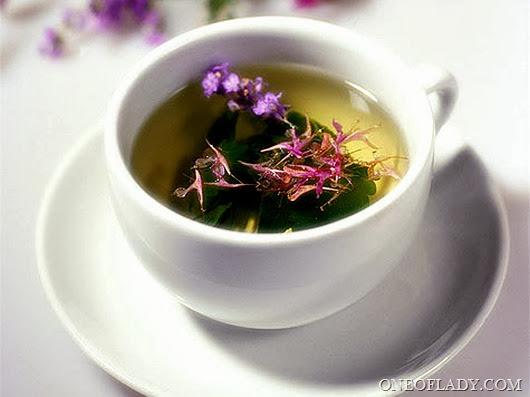 Уникальный состав Копорского чая