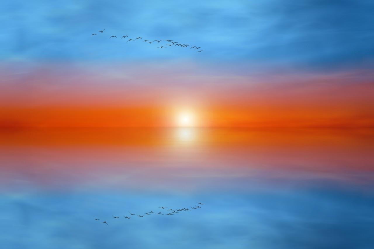 Фотография Dual Sky автор Josep Sumalla на 500px