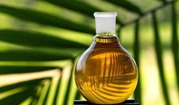 Пальмовое масло - вездесущая…
