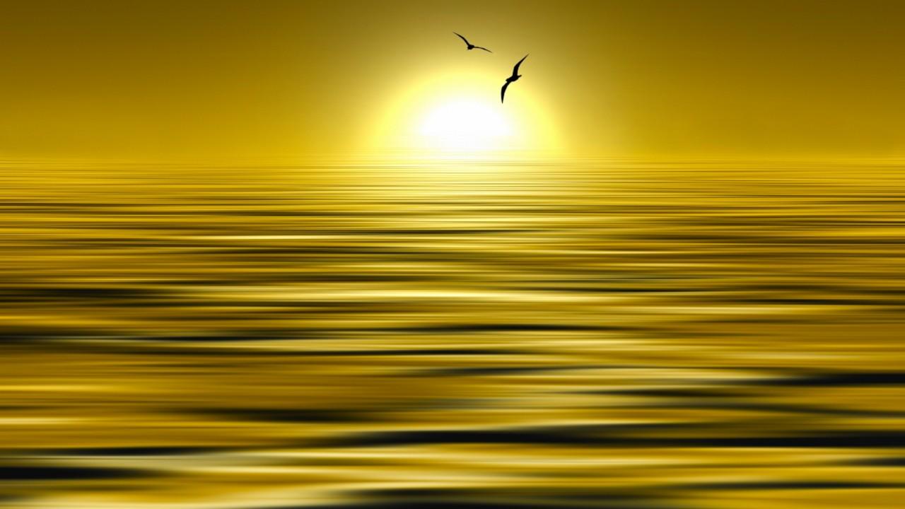 Фотография Liquid Gold автор Josep Sumalla на 500px