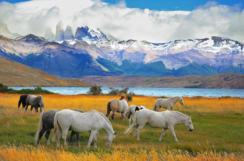 Красота нашей планеты: национальные парки Южной Америки
