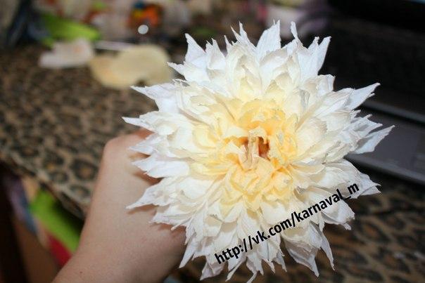 Большие хризантемы из гофрированной бумаги своими руками