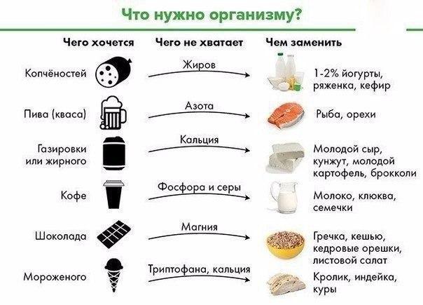 Что нужно организму?