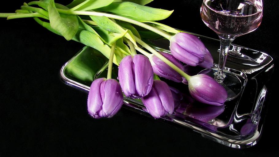 бокал, вино, поднос, тюльпаны, Цветы