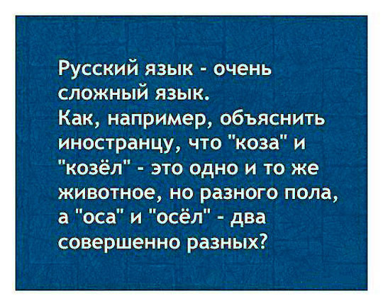 Русский язык: взрыв мозга для иностранцев + 44 страшилки русской грамматики
