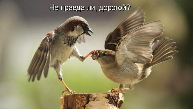 """Михаил Хазин: """"С либеральным монополизмом пора заканчивать"""""""