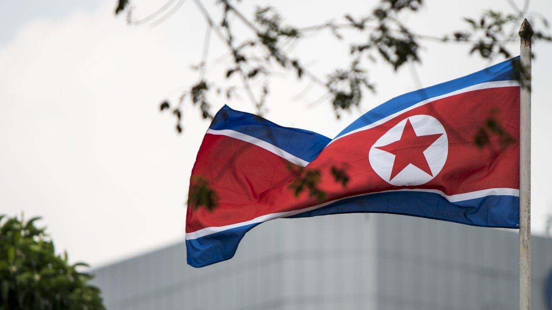 Две Кореи направят единую ко…