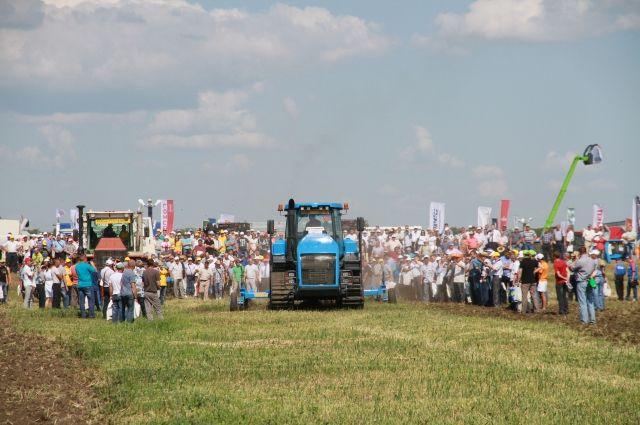 Форум аграриев. В Алтайском крае пройдет «День сибирского поля»