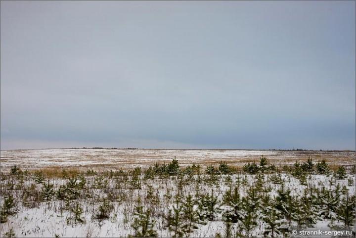 Раствориться зимой в снежных просторах