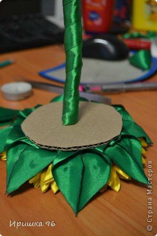 Мастер-класс Поделка изделие 8 марта День рождения Моделирование конструирование МК подсолнуха Гипс Кофе Ленты фото 11